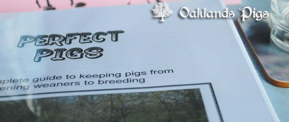 perfect pigs book